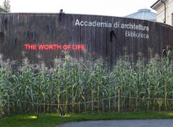 """Koen Vanmechelen. The Worth of Life 1982-2019\"" >  OPEN DAY con INGRESSO GRATUITO"