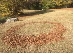 foglie parco taino