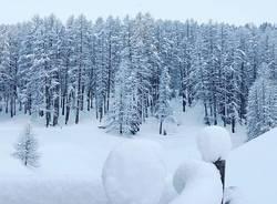 Livigno Neve novembre 2019