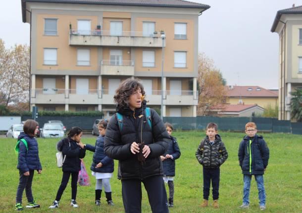Lomazzo celebra la festa dell'albero con 50 nuove piante