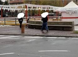 pista pattinaggio cislago