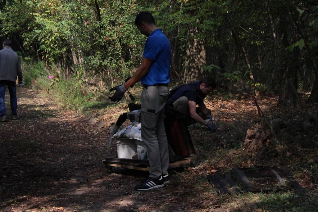 pulizia boschi Quanta System