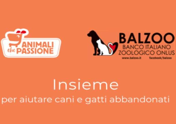 Raccolta Alimentare animali