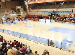 palaeolo palasport castelletto ticino oleggio magic basket