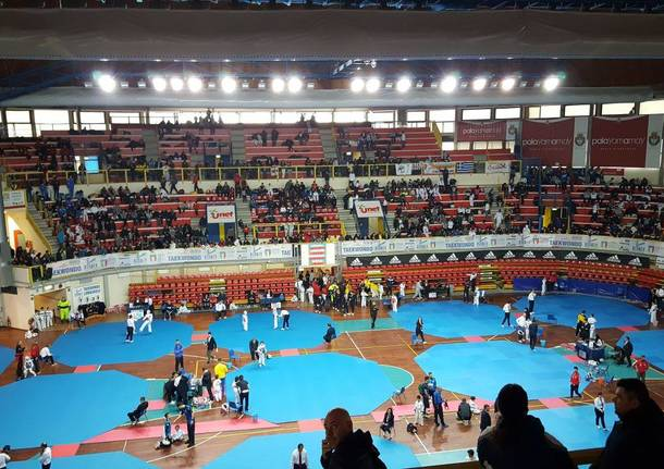taekwondo insubria cup