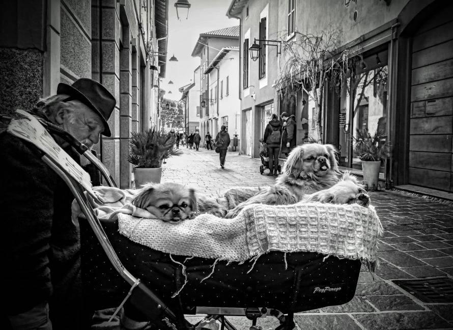 Centro di Saronno, personaggio in via San Cristoforo (foto di Emanuele Santagostino)