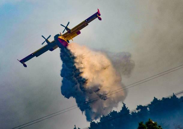 Mezzi in azione per spegnere l'incendio nel bosco di Lentate
