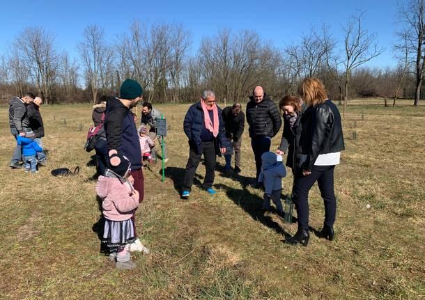 piantumazione alberi nati 2018 busto arsizio