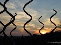Roseto della pace Induno Olona - foto di Luca Leone