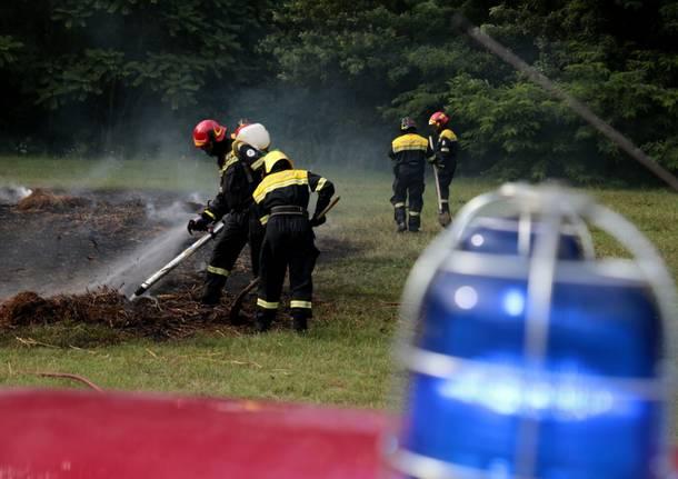 Volontari del Parco delle Groane in azione