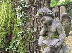 Viggiù, il vecchio cimitero - foto di Merua61