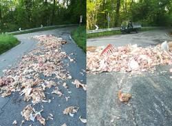 carne strada casale litta