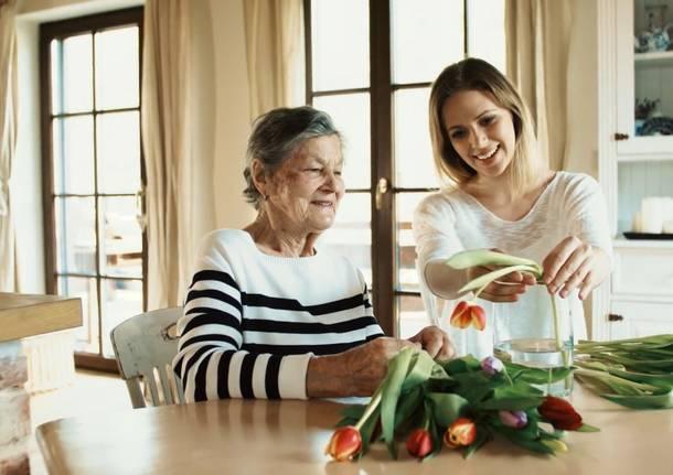 badante casa anziani