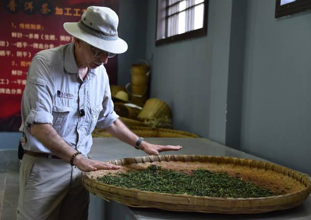 Alla ricerca delle origini di tè e caffè. Si parte dalla Cina