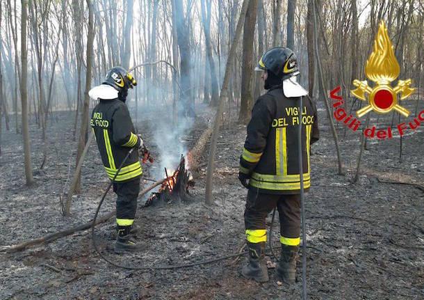 incendio marnate aprile 2020