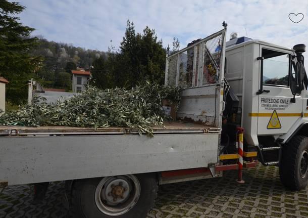 La Protezione Civile di Laveno Mombello distribuisce ramoscelli di ulivo