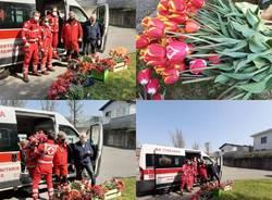 Tulipani in dono per la Focris