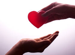 Avis donazione sangue generiche