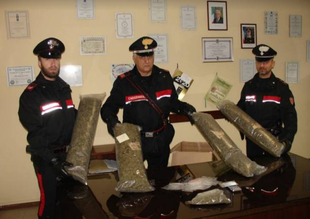 Il sequestro di marijuana a Luino