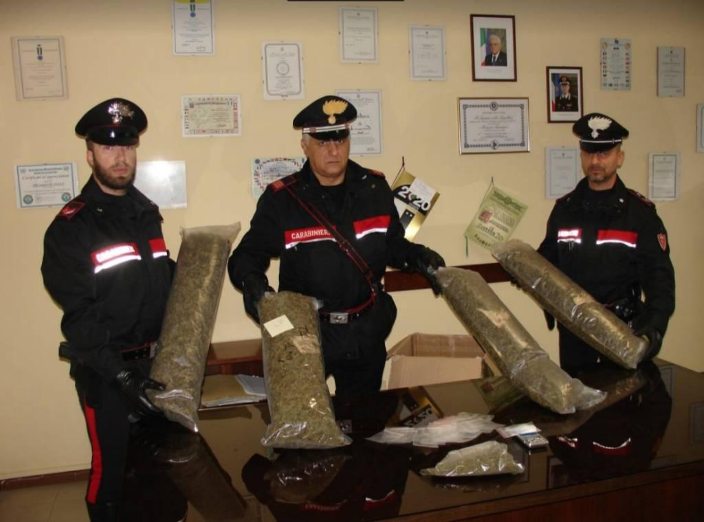Il sequestro di marijuana a Luino
