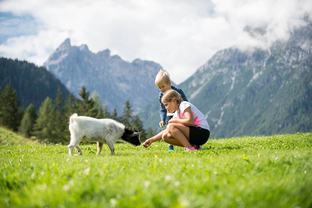 Familix nature programme Sudtirol