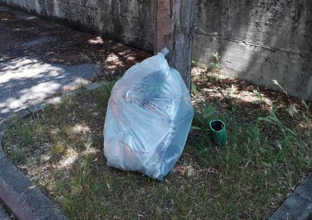Grandi pulizie del Gruppo Camminata Ecologica Rescaldina