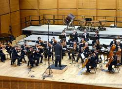 insubria chamber orchestra