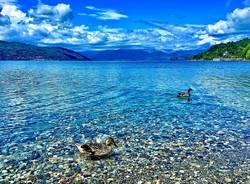 ispra -angelo crimi lago maggiore