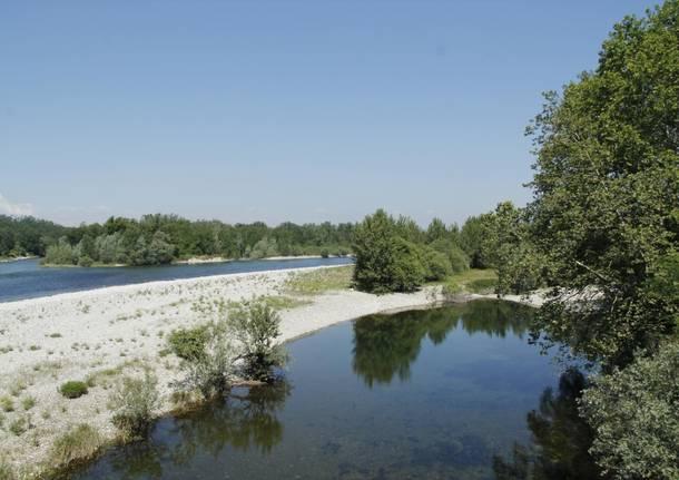 Parco del Ticino generica