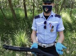 Ritrovamenti nell'ex bosco della droga al Parco delle Groane