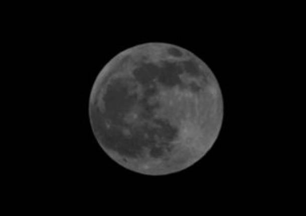Antares eclissi luna