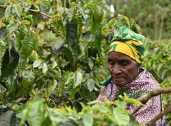 In viaggio col mercante, Tanzania. Parte 4