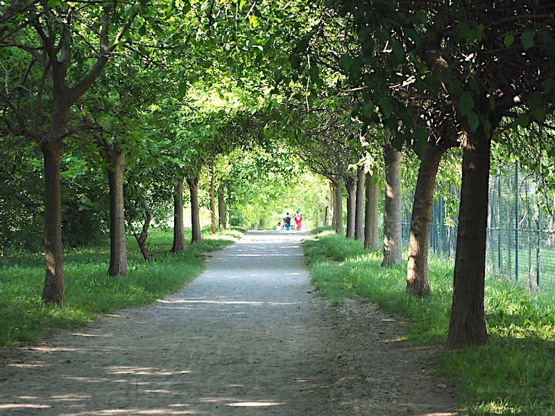Parco del Lura (foto di Roberto Gernetti)