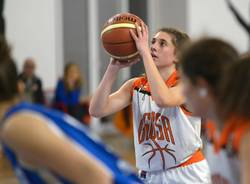 basket canegrate