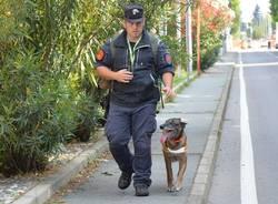 """Ancora in azione """"Puma"""", il cane antiveleno"""