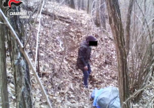 L'operazione antidroga nel boschi fra il Tradatese e il Comasco