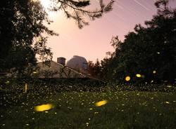 Centro Didattico Scientifico – Osservatorio Astronomico del Parco Pineta