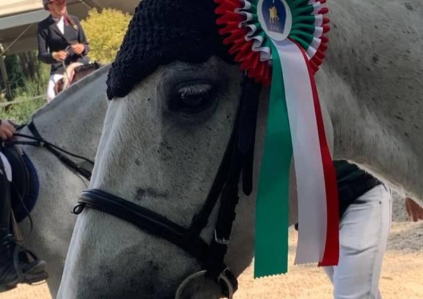 Pony da premio a Casale Litta