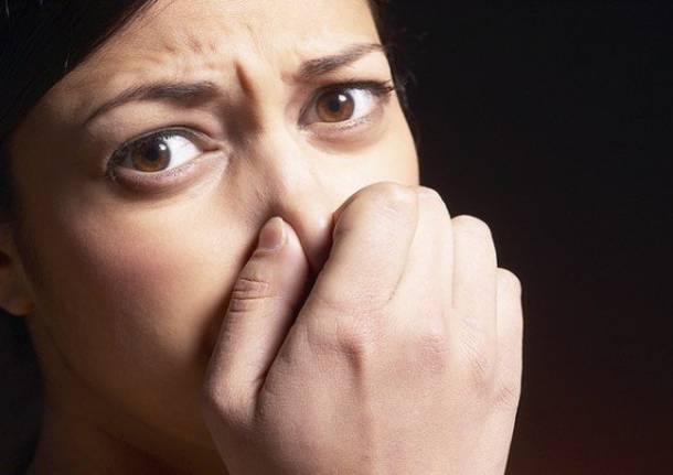 puzza puzze odori