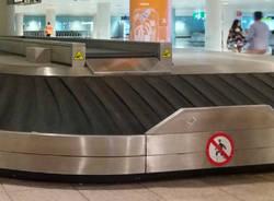 rullo bagagli
