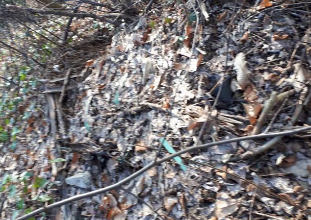 Degrado ambientale del territorio di Brunello