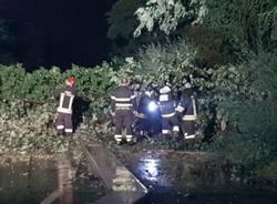 Maltempo, quattro alberi caduti in via Marelli a Cerro Maggiore