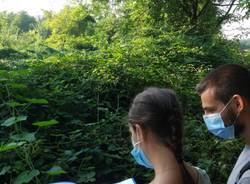 Bioblitz al Parco Lura, rilevate 55 diverse specie
