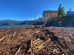 """La \""""marea\"""" su alberi e legname sul Lago Maggiore"""