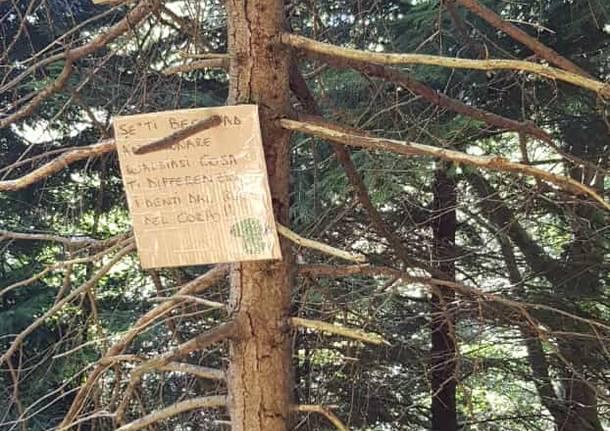 I cartelli contro gli sporcaccioni del bosco