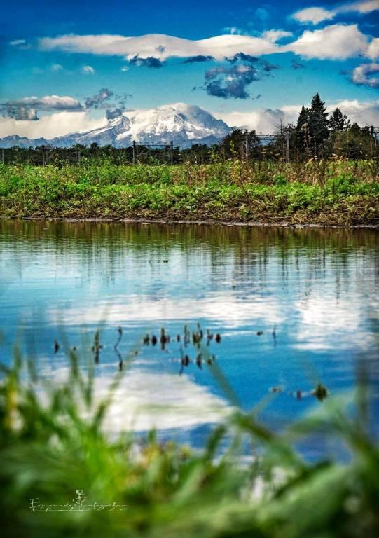 Il Monte Rosa visto da Gerenzano