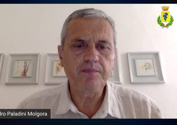 Molgora