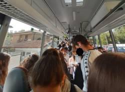 autobus gavirate