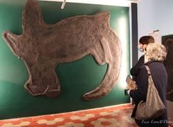 Besano - Inaugurazione del nuovo allestimento del Museo dei fossili