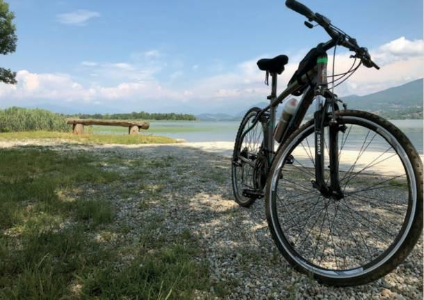 Birdwatching in bici sul lago